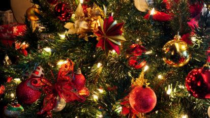 JCI Kerstbomenactie
